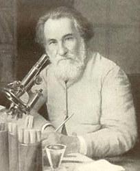 Великий российский физиолог, лауреат Нобелевской премии, Илья Мечников утверждал, что смерть в возрасте младше 150 лет - это насильственная смерть