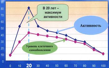График возрастной активности иммунной системы (вилочковой железы)